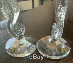 Waterford One Pair Seahorse CANDLEHOLDERS/CANDLESTICKS 11 Labels Box Tissue